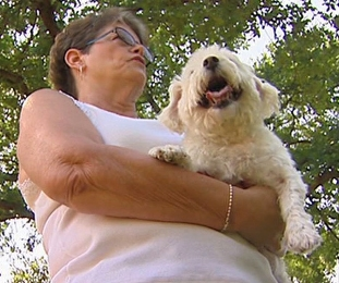 Stolen Dog Reunited with Owner After Three Years