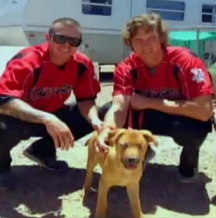 Adopted Blind Dog is Mascot for Baseball Team