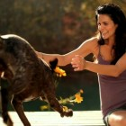 Country Star's Latest Video Goes to the Dogs