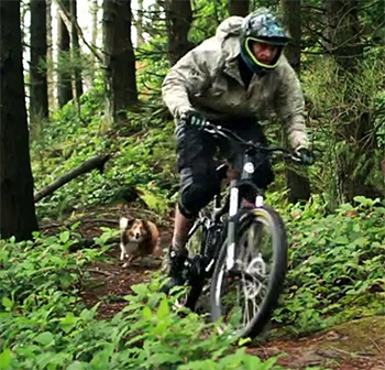 The Saturday Pet Blogger Hop: Downhill Dog is King of the Mountain