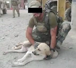 Soldier and Dog Conquer Distance, Disaster