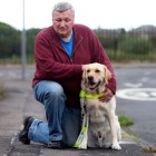 Guide Dog Injured Pulling Owner from Path of Oncoming Car