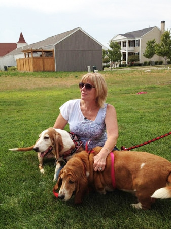 Stolen Basset Hounds Recovered After Five Years