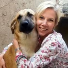 Sentenced to Death, Dog of War is Adopted by the Woman Who Saved Him