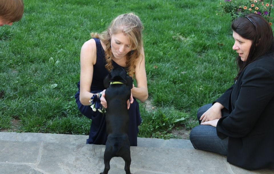 Student Makes Saving Dogs Her Mission