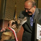 Honored Police Dog Has Died