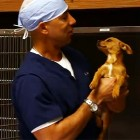 Pet Population Control: Dr. Kwane's Five Minute Spay (VIDEO)