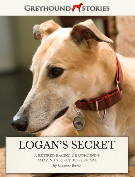 Book Giveaway: Logan's Secret