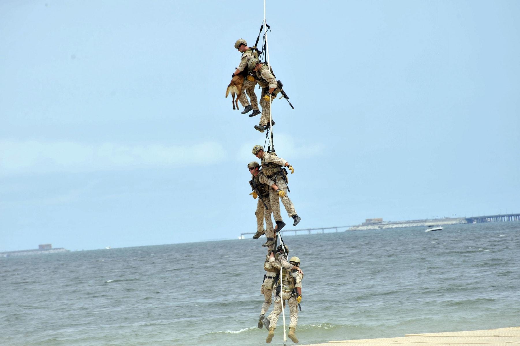 Navy SEALs Special Patrol
