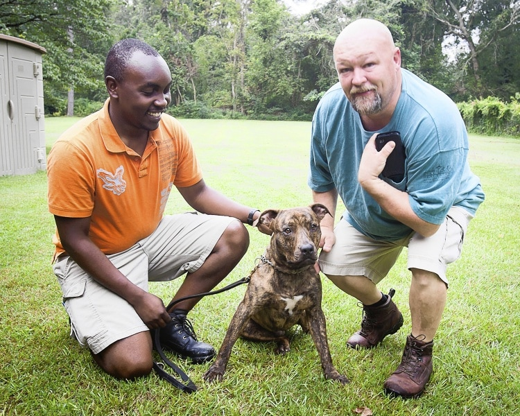 Rescued Dog Gets a Job in Kenya