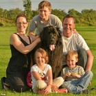 Rescue Teams Saves Newfoundland Dog Who Had Fallen Over 150ft Cliff