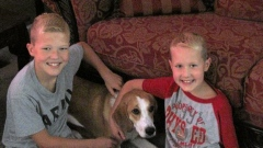 Two Young Boys Run Lemonade Stand to Help Dog Rescue Organization