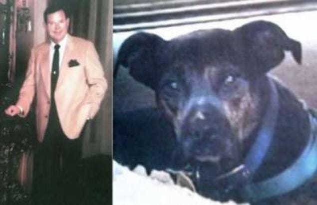 Texas Dog Inherits Owner's Wealthy Fortune
