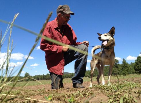 Internet Reunites Homeless Military Vet and Canine Companion