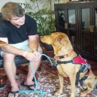 Diabetic Man Sues County & Restaurant for Service Dog Discrimination