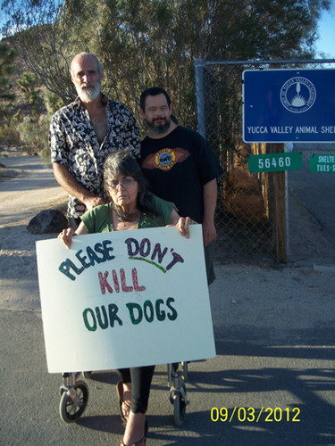 Veteran's Dogs to Be Euthanized by the Town of Yucca Valley