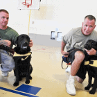 Program Matches Service Dogs Trained by Prison Inmates with Disabled Veterans