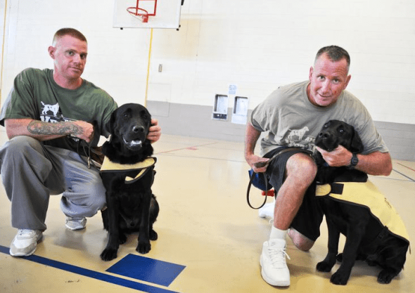 Program Matches Service Dogs Trained By Prison Inmates