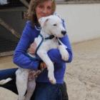 Puppy Found Dumped in Garbage Bin