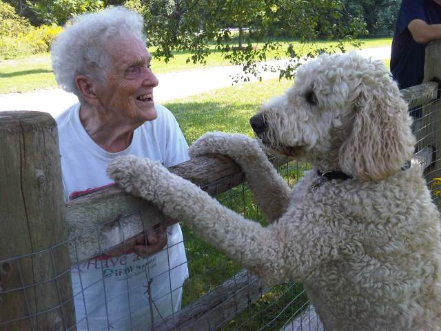 Dogs and Seniors: How The Love of a Pooch Can Keep Us Young