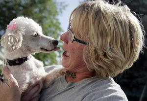 After Two and a Half Years, Lost Dog is Found 1300 miles Away