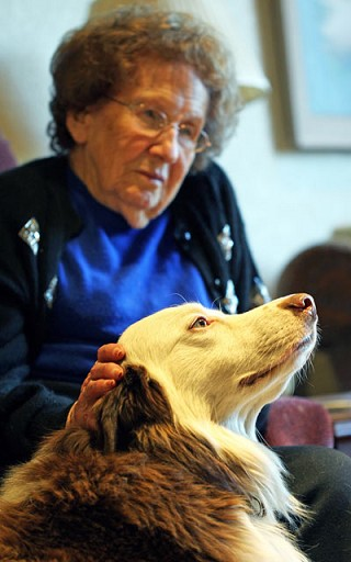 Rescued dog now helping elderly patients as a therapy dog