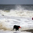 A woman and her dog walking along the beach in Maryland on Saturday. The surf was already churning days before the storm is set to arrive there.