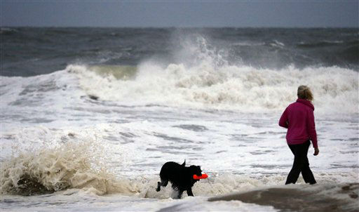Hurricane Sandy is an important reminder to make sure you have an emergency plan for your dog