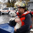 Hundreds of Evacuation Shelters Welcome Pets During Sandy's Surge