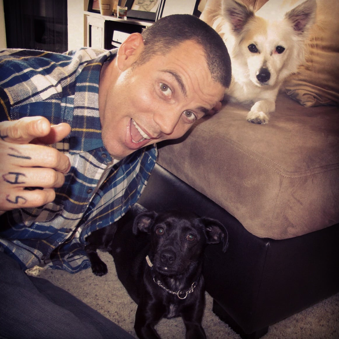 How Adopting Dogs Helped Jackass's Steve-O on the Path to Sobriety