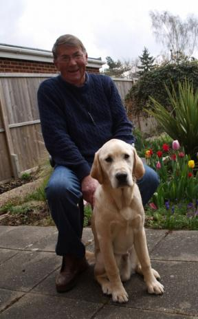 Guide dog puppy to be named after dedicated dog walker