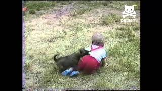 Dogs and Kids: Cuteness Overload