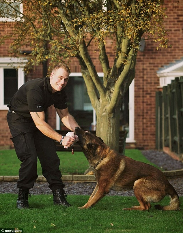 After an impressive career Janus the police dog is retiring