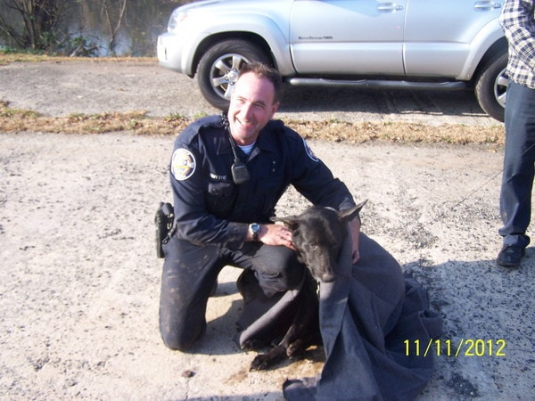 Selfless police officer jumps in to river to save drowning dog