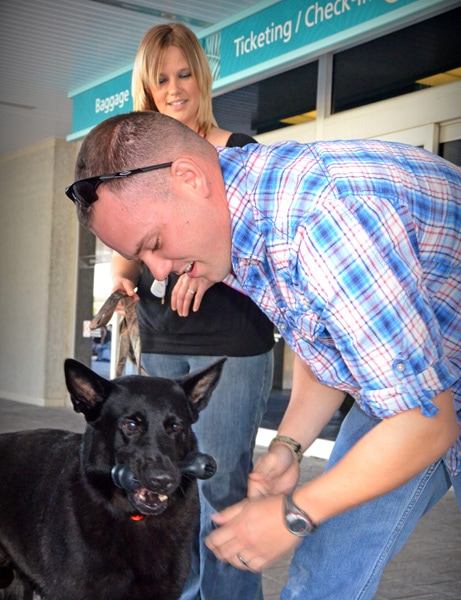 Army dog reunited with his handler