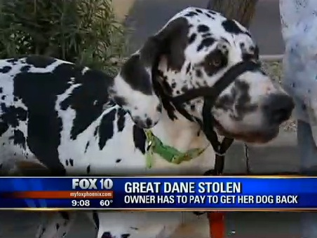 Woman Says Animal Control Held Her Dog Hostage