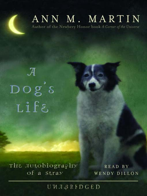 Essay On Autobiography Of A Stray Dog