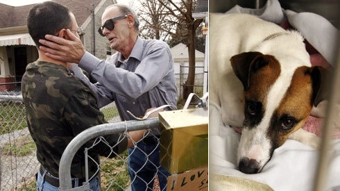 Father and Son Estranged for 29 Years, Dog Story Reunites Them