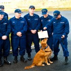 Buddy enlists as the new mascot for Coast Guard Station Menemsha