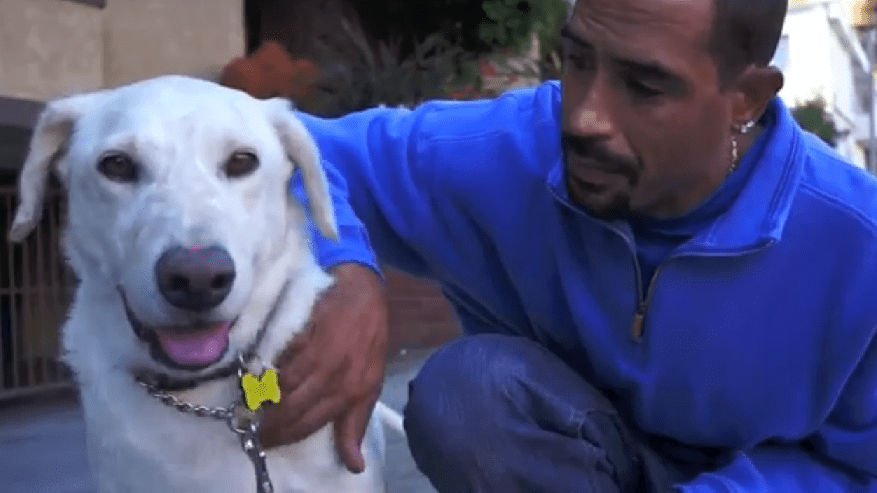Man who rescued dog needs help