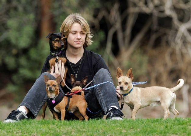 Animal rescue started by teenager has helped save 20,000 animals