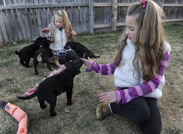 Two little girls turn grief over their dog into a nonprofit to help other dogs
