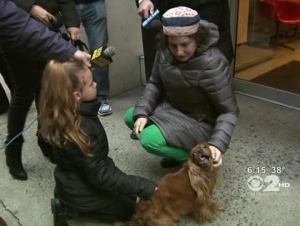 Dognapper arrested, and Christmas saved for a NY girl and her pet