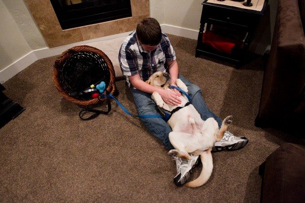 Sawyer's whole life changed when he got his first service dog