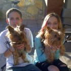 Military Family Reunited With Yorkie After Four Years Apart