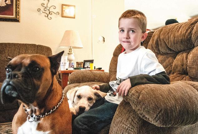 Family Dogs Keep Missing 6-Year-Old Boy from Freezing to Death