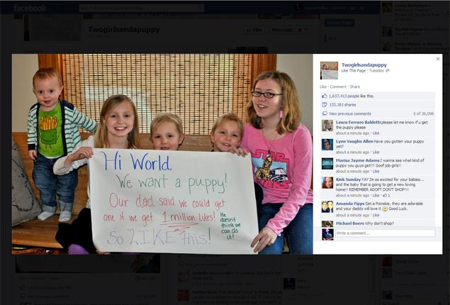 Sisters' Facebook Campaign for a Shelter Puppy Gets 2.6 Million Likes