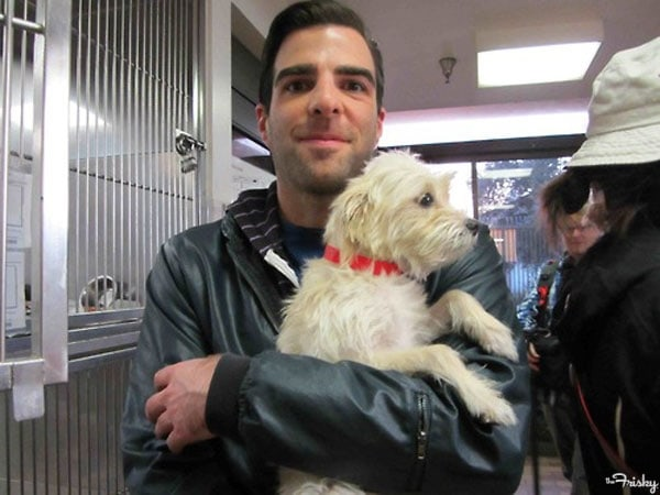 Zachary Quinto Raises Money for Shelters by Turning Adoption Story into Film
