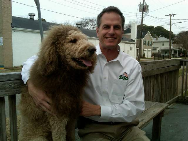 Dog mistaken for a lion leads to 911 call