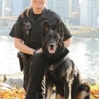 Beloved police dog passes away on New Years Day